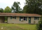 Foreclosed Home in Vernon 32462 ROCHE AVE - Property ID: 3356649517