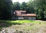 Foreclosed Home in East Stroudsburg 18302 SUGAR MAPLE LN - Property ID: 3364829556