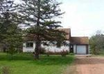 Foreclosed Home in Wisconsin Rapids 54494 KELLNER RD - Property ID: 3365810617