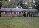 Foreclosed Home in Brunswick 31525 BELLE POINT PKWY - Property ID: 3376454251