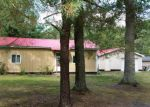 Foreclosed Home in Bitely 49309 W 17 MILE RD - Property ID: 3379556876