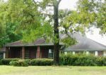 Foreclosed Home in Middleburg 32068 SADDLEHORN TRL - Property ID: 3383541109