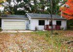 Foreclosed Home in Roscommon 48653 AUTUMN LN - Property ID: 3384820435