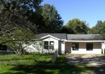 Foreclosed Home in Plainwell 49080 FLORENCE ST - Property ID: 3384932558