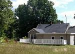 Foreclosed Home in White Cloud 49349 W 12TH ST - Property ID: 3385076659