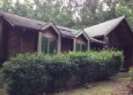Foreclosed Home in Snow Camp 27349 CANE CREEK RD - Property ID: 3387141710