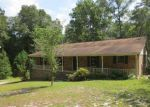 Foreclosed Home in Gaston 29053 OLD SANDY RUN RD - Property ID: 3389748524