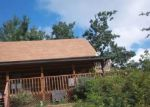 Foreclosed Home in Sevierville 37876 HUMMINGBIRD HILL WAY - Property ID: 3389955236