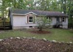 Foreclosed Home in Allegan 49010 TOMAHAWK TRL - Property ID: 3413653134