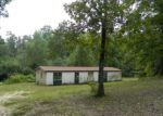Foreclosed Home in Mabelvale 72103 CLEARLAKE DR - Property ID: 3415380513
