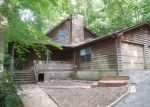 Foreclosed Home in Guntersville 35976 WYETH DR - Property ID: 3423860116