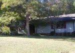 Foreclosed Home in Pinson 35126 OAK LEAF LN - Property ID: 3423888596