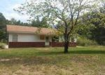 Foreclosed Home in Bivins 75555 COUNTY ROAD 4223 - Property ID: 3429875255