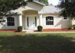 Foreclosed Home in Palm Coast 32164 ZAUN TRL - Property ID: 3438533573