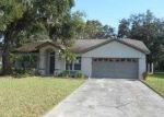 Foreclosed Home in Lakeland 33805 LEILA PL - Property ID: 3438557660