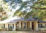 Foreclosed Home in Fernandina Beach 32034 SPANISH OAKS CIR - Property ID: 3440586800