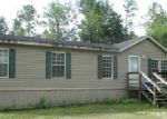 Foreclosed Home in Middleburg 32068 LAUREL ST - Property ID: 3440639345