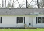 Foreclosed Home in Fennville 49408 113TH AVE - Property ID: 3449800453