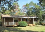 Foreclosed Home in Plantersville 77363 TAMMY CIR - Property ID: 3451325481