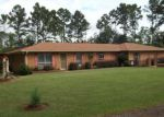 Foreclosed Home in Summit 39666 BRUMFIELD RD SW - Property ID: 3453589812