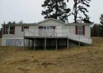 Foreclosed Home in Magazine 72943 PAINT ROCK RD - Property ID: 3460379717
