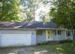 Foreclosed Home in Lake Ann 49650 MAPLE ST - Property ID: 3471293140
