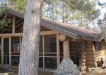 Foreclosed Home in Effie 56639 E DEER LAKE ACCESS RD - Property ID: 3473984951