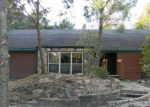 Foreclosed Home in Lakeland 33813 CALUSA DR - Property ID: 3481908321
