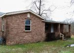 Foreclosed Home in Mulberry 72947 S GINTOWN RD - Property ID: 3488747733