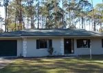 Foreclosed Home in Palm Coast 32164 WELLSHIRE LN - Property ID: 3488952703