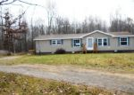 Foreclosed Home in Mayville 48744 AMBROSE RD - Property ID: 3489871124