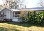 Foreclosed Home in Astor 32102 ELM RD - Property ID: 3494838186