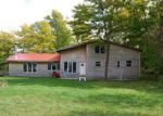 Foreclosed Home in Talmoon 56637 ETTERS RD - Property ID: 3497438890