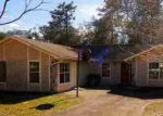 Foreclosed Home in Saint Augustine 32086 BROOKSIDE CT - Property ID: 3544952489