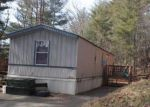 Foreclosed Home in Hiawassee 30546 BEARMEAT OVERLOOK - Property ID: 3551700805