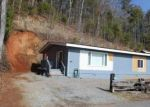 Foreclosed Home in Hiawassee 30546 BEARMEAT VILLAGE RD - Property ID: 3551701675