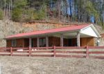 Foreclosed Home in Hiawassee 30546 HIGHWAY 76 E - Property ID: 3551703868