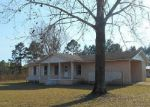 Foreclosed Home in Middleburg 32068 MAVERICK RD - Property ID: 3553212236