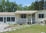 Foreclosed Home in Windsor 27983 FRANCIS MILL RD - Property ID: 3582463207
