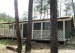 Foreclosed Home in Ruidoso 88345 UMBRELLA DR - Property ID: 3582544684
