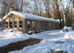 Foreclosed Home in Baldwin 49304 S PINGREE AVE - Property ID: 3593188764