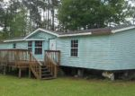 Foreclosed Home in Middleburg 32068 BLUEBILL RD - Property ID: 3611601625