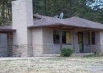 Foreclosed Home in Ruidoso 88345 JUNCTION RD - Property ID: 3628324787