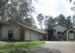 Foreclosed Home in Spring Hill 34609 LITTLE FARMS DR - Property ID: 3630047778