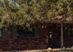 Foreclosed Home in Ironton 63650 COUNTY ROAD 94A - Property ID: 3643127880