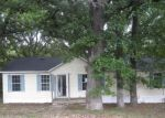 Foreclosed Home in Mead 73449 BASS DR - Property ID: 3655340780