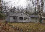 Foreclosed Home in Presque Isle 49777 FIRESIDE HWY - Property ID: 3661052390