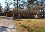 Foreclosed Home in Vidor 77662 N MAYHAW DR - Property ID: 3664106378