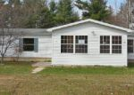 Foreclosed Home in Newaygo 49337 MAPLE RIDGE RD - Property ID: 3665680465