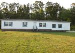Foreclosed Home in Trenton 28585 GREEN RD - Property ID: 3666059303